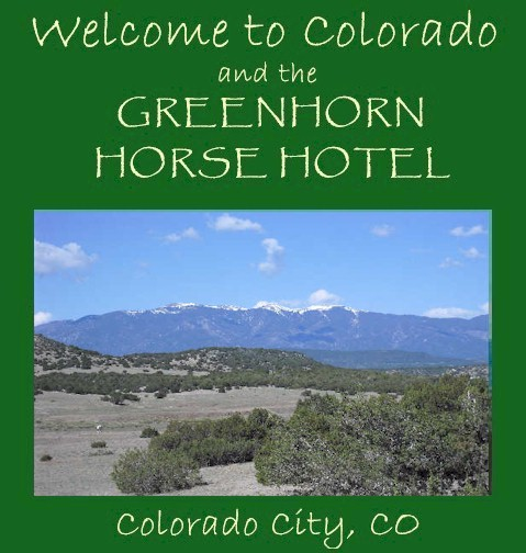 Welcome to the Greenhorn Horse Hotel!